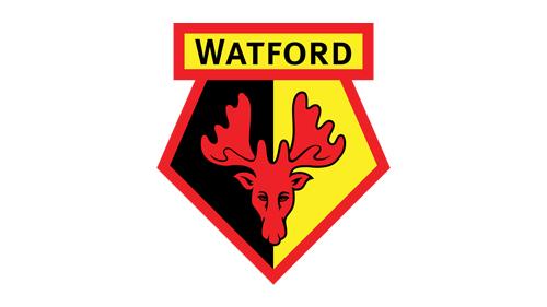 官方:沃特福德与球员就延期付出薪水达到共同