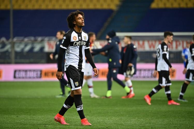 齐尔克泽膝盖韧带受伤,帕尔马与拜仁洽谈手术方案   